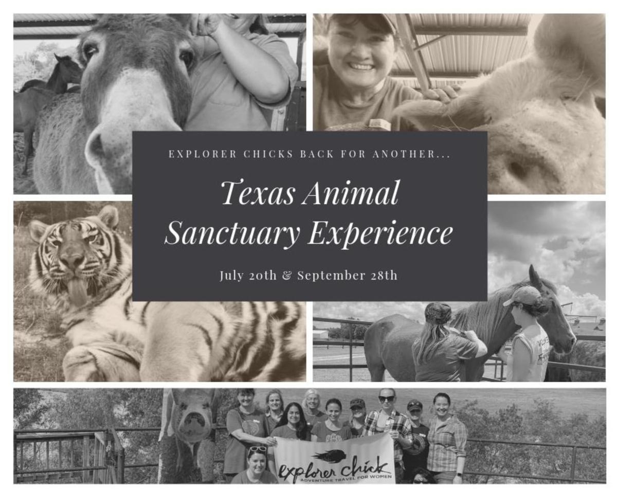 Animal Sanctuary Experience Saturday | News | athensreview com