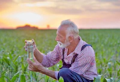 Senior,Farmer,Squatting,Beside,Rain,Gauge,In,Corn,Field,At