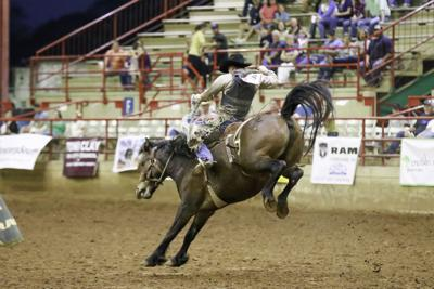 Go Texan Rodeo success despite rough weather | Local News