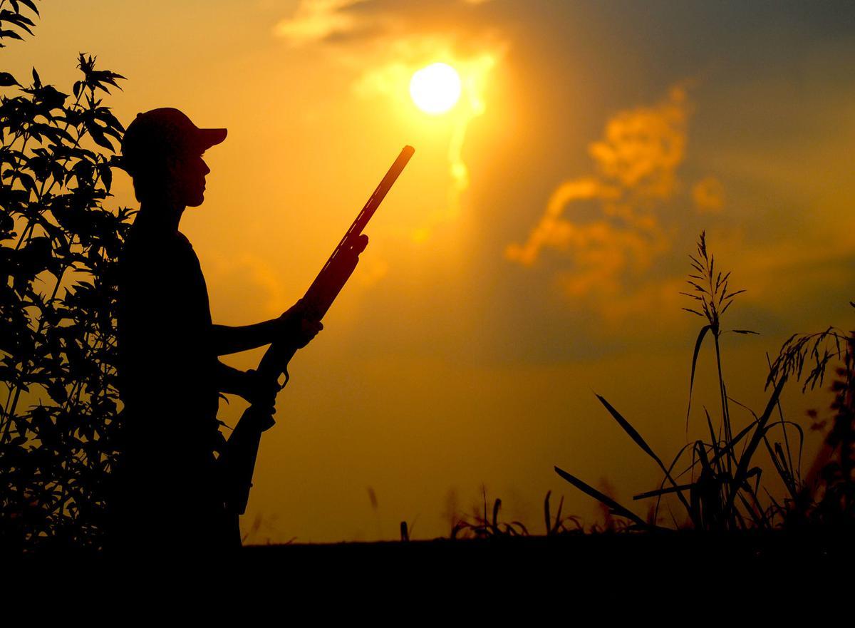 Hunter  Silhouette for Survey.jpg