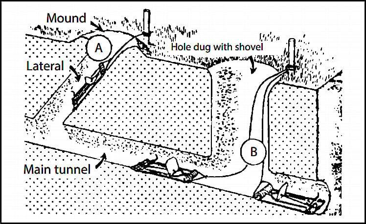 Gopher Tunnel System.jpg