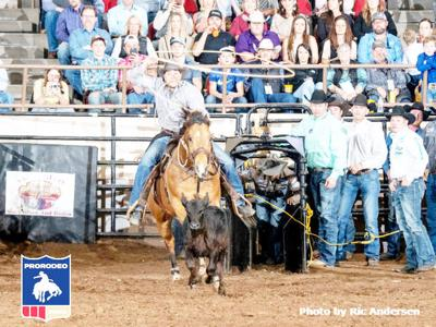 Major winter rodeos underway | Sports | athensreview com