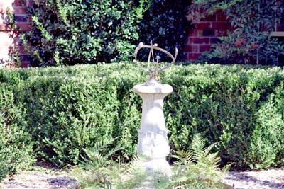 11-17-20 Master Gardener.jpg