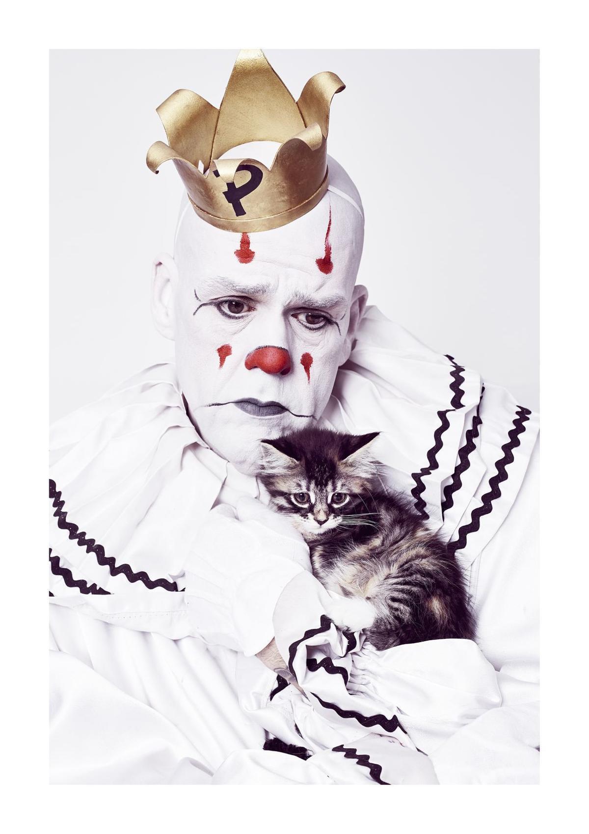 Puddles_Kitten