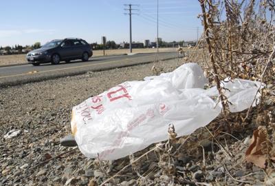 Plastic Bags Forgotten Law