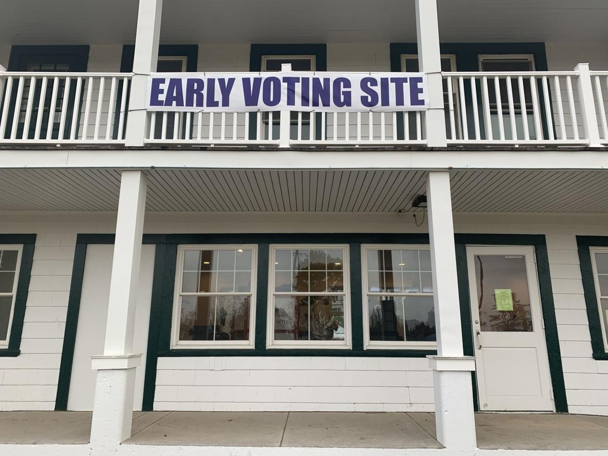 Early Voting 1 (copy)