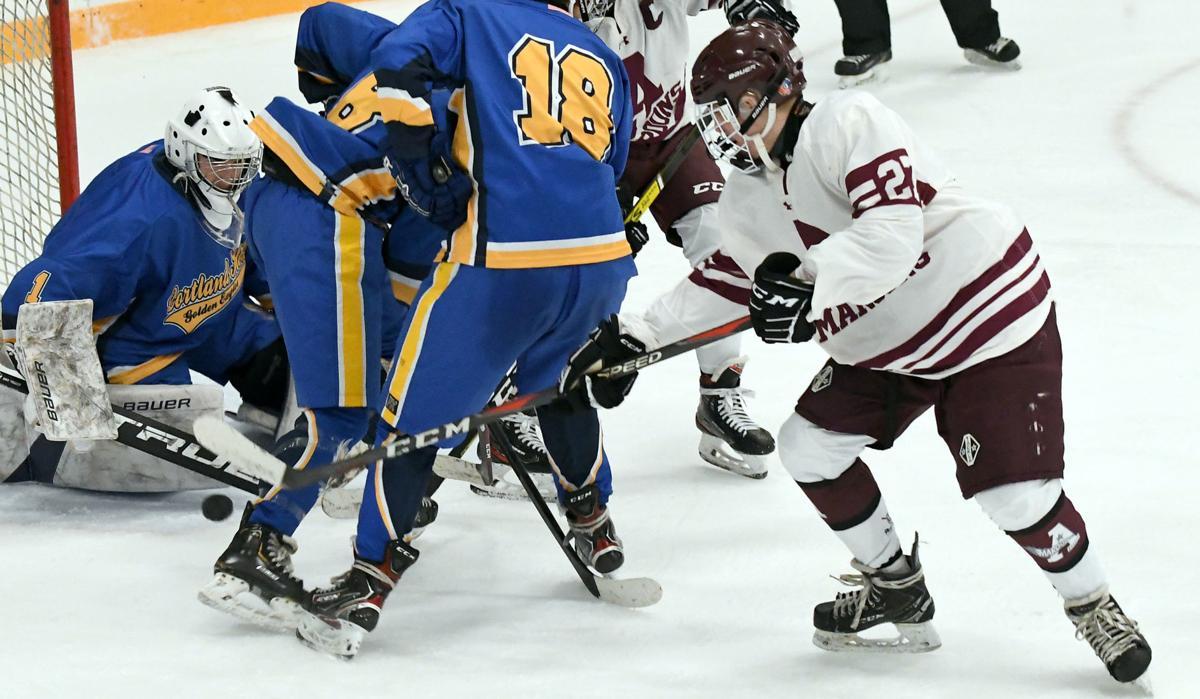 Auburn Hockey 2.JPG