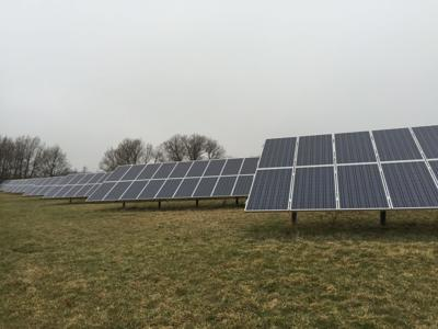 Growing power: Spafford's Fesko Farm offsets energy consumption with solar panel array