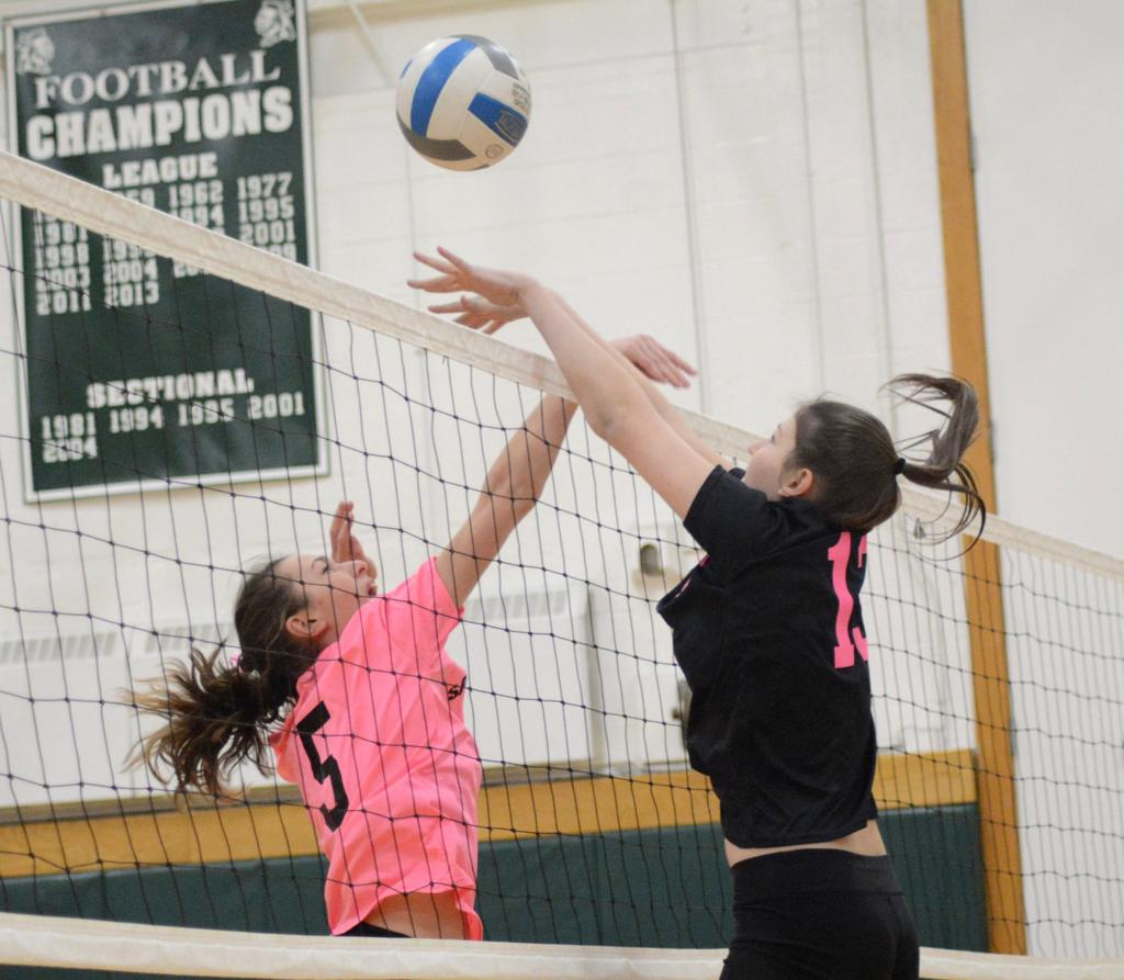 Weedsport volleyball team rallies to top Port Byron in four sets