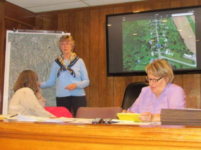 After tree inventory, Skaneateles Town Board anticipates developing management plan