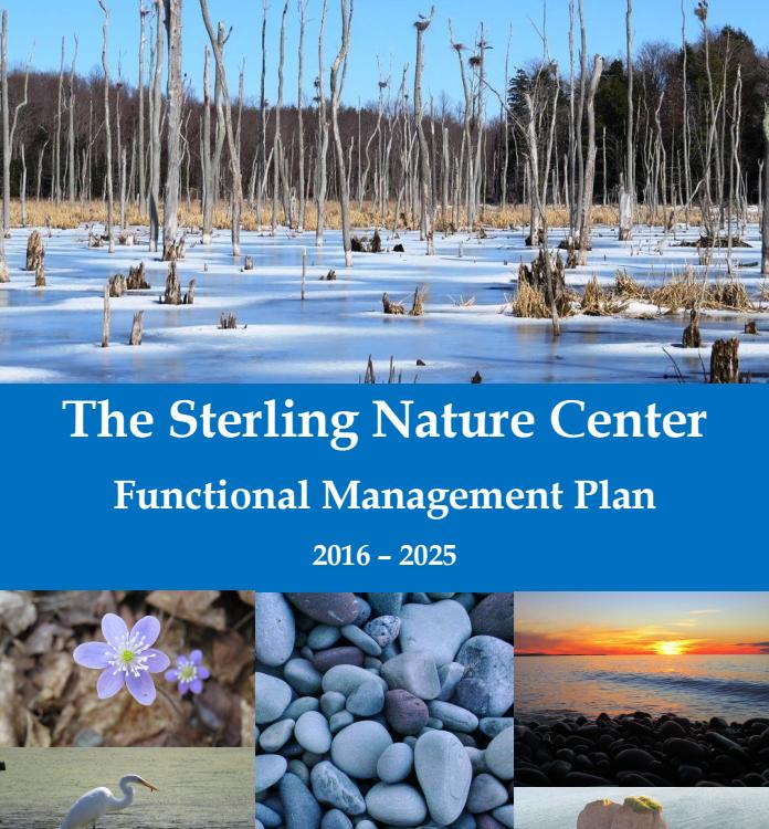 Cornell Design Students Consider Sterling Nature Center