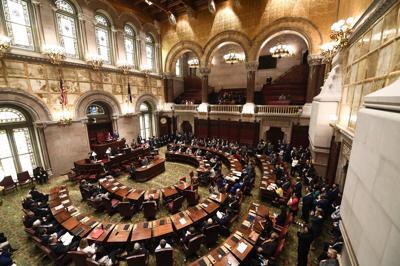 Election 2020 New York Legislature