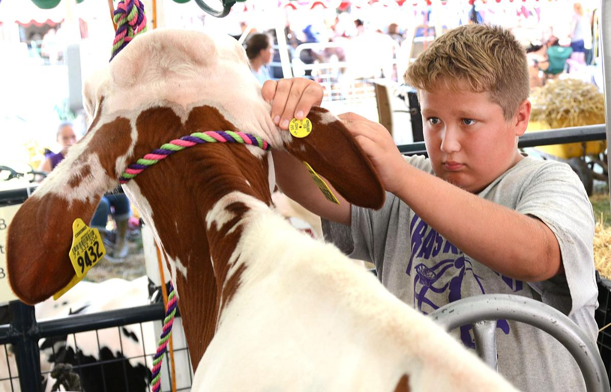 Remember the Big 6 Picnic & 4-H Youth Country Fair