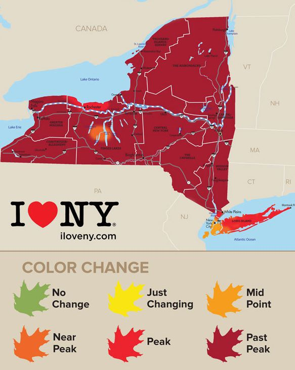 New york state fall foliage report parts of finger lakes still new york state fall foliage report parts of finger lakes still showing vibrant colors sciox Gallery