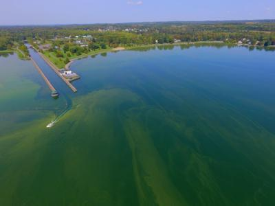 Owasco Lake groups ready to take algal bloom project requests to Albany
