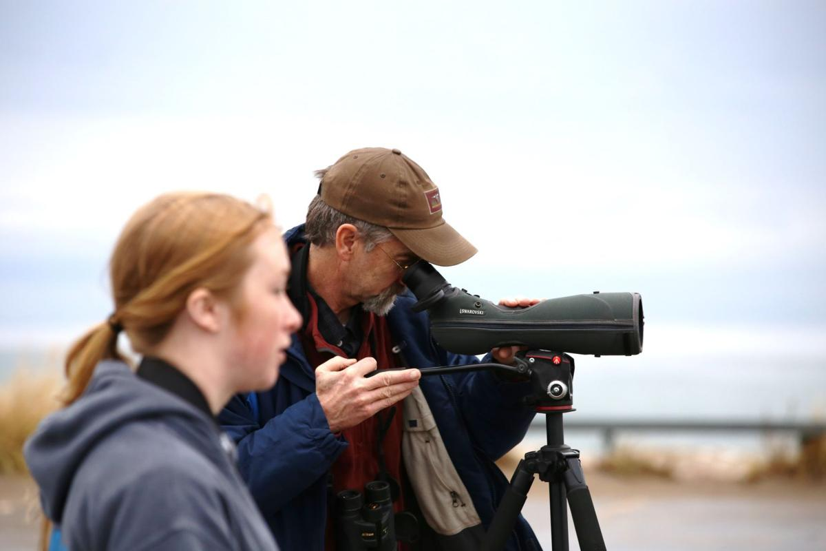 Midwinter Bald Eagle Survey
