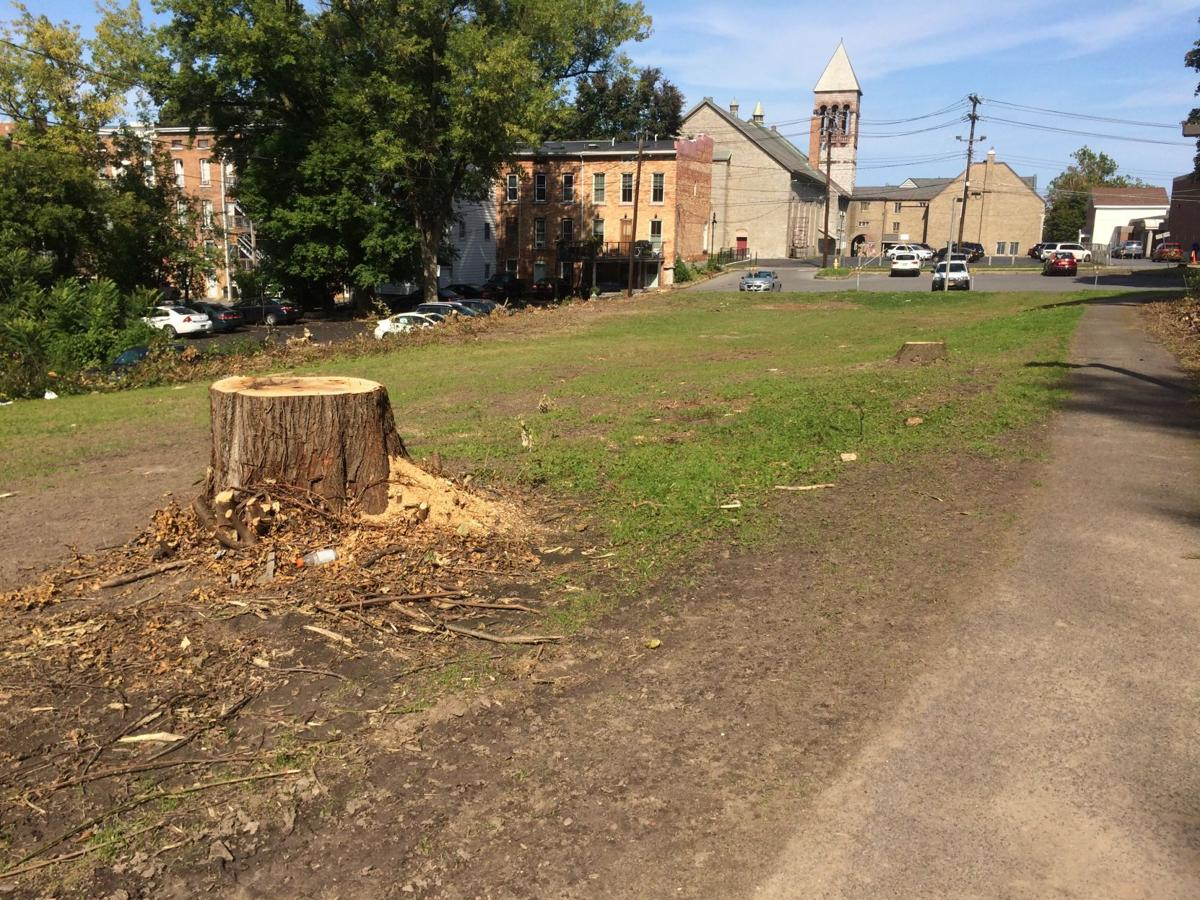 Auburn officials digging deeper into impacts of Court Street parking lot expansion