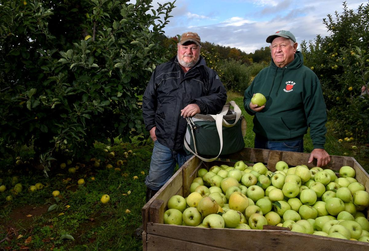 Sennett orchard boasts new, exclusive varieties