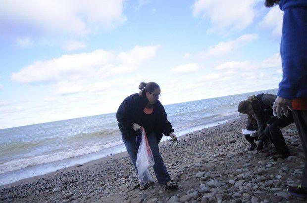 Volunteers help clean shore