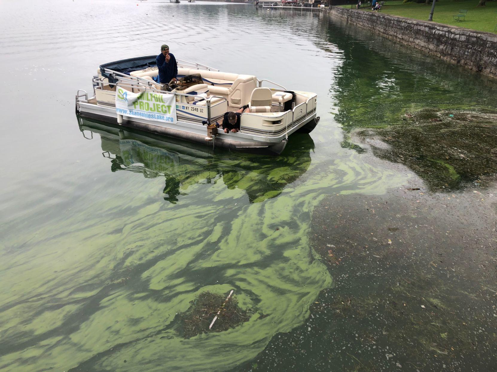Harmful algal bloom reported on Skaneateles Lake