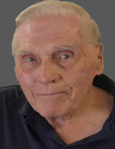 Robert D. Stebbins