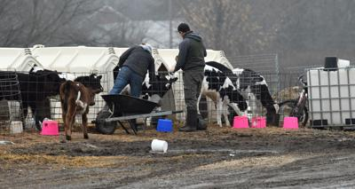 Farm Workers 22.JPG