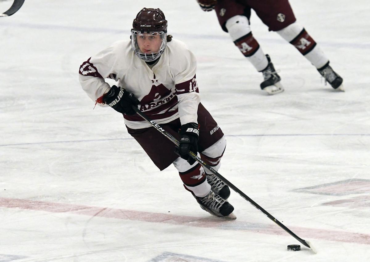 Auburn New Hartford hockey 6.JPG