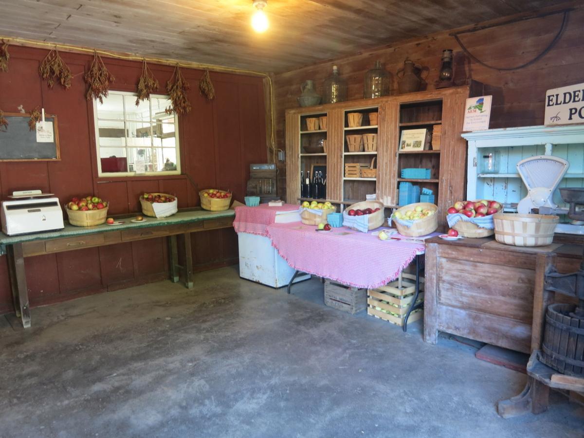 Elderberry Pond brings innovation, ingenuity to organic growing with ...