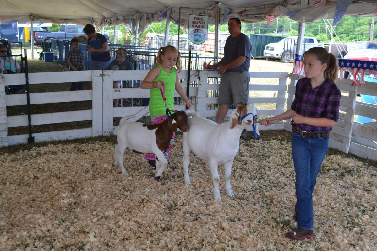 Cayuga County Fair