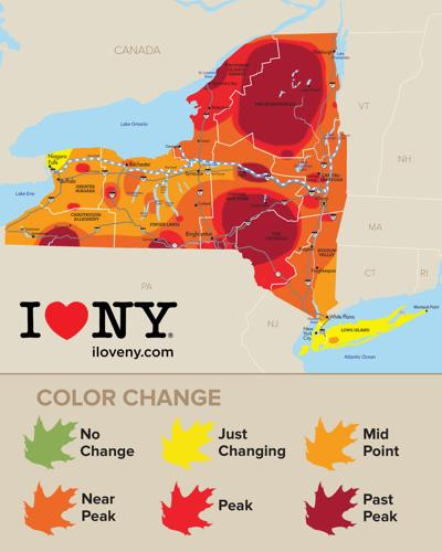 Foliage Map New York 2017.New York State Fall Foliage Report For Week Of Oct 18 Local News