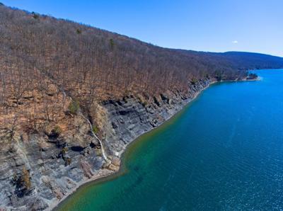 Skaneateles Lake Staghorn Cliffs