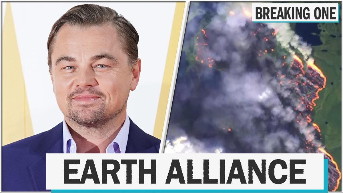 Leonardo DiCaprio's Earth Alliance pledges $5 million in aid to Amazon fires
