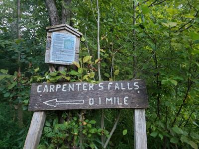 Public weighs in on DEC proposal for Carpenter Falls in Niles