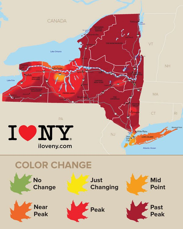 New York state fall foliage report | Local News ...