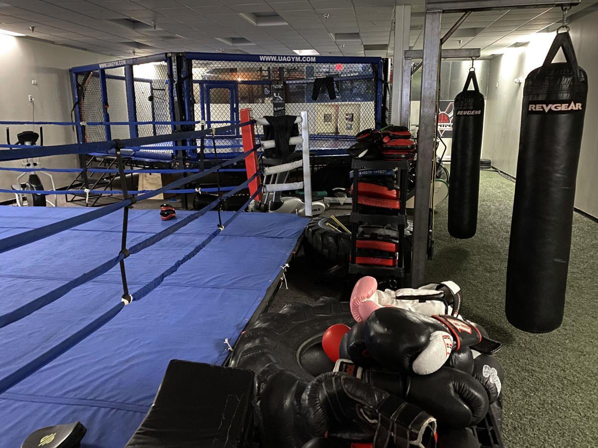 MMA kickboxing 3
