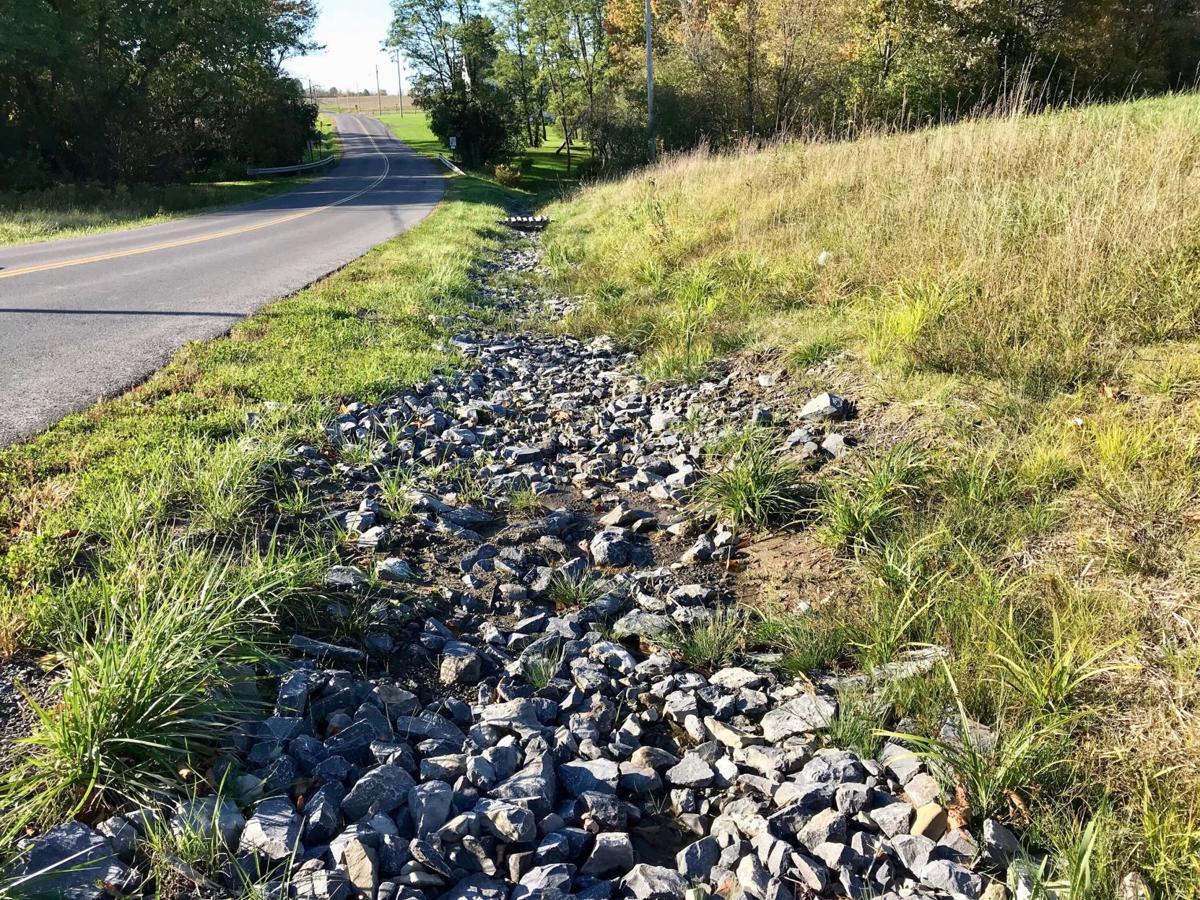 Owasco roadside ditch
