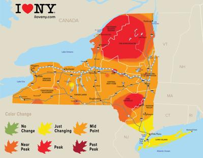 Foliage Map New York 2017.New York State Fall Foliage Report For Week Of Oct 10 Local News
