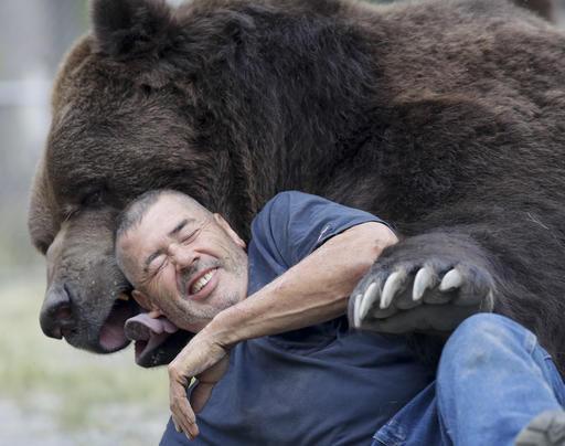 The Bear Nuzzler