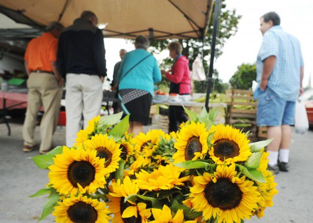 Cayuga County farmers market coupons for seniors now available