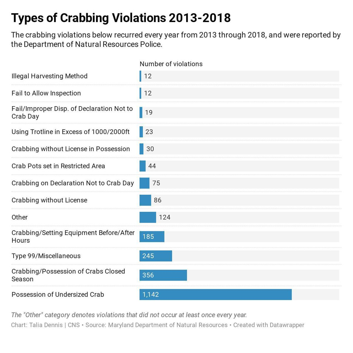 Undersized possession dominates state crab violations