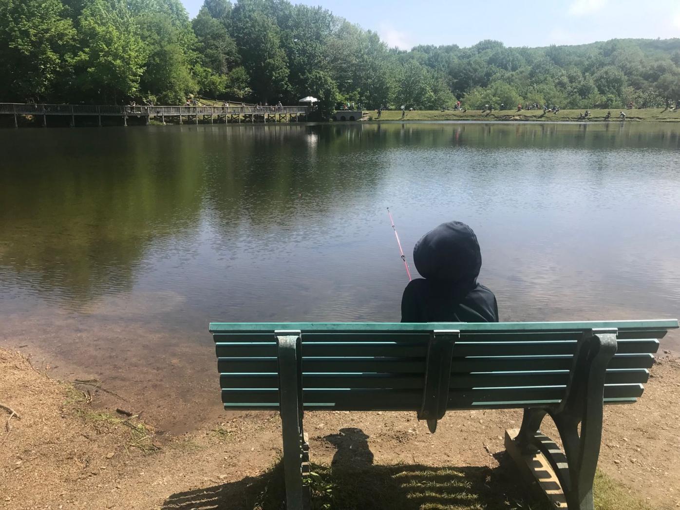Girl fishing on bench