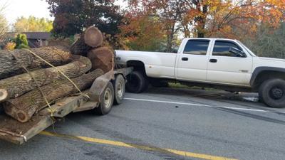 truck logs