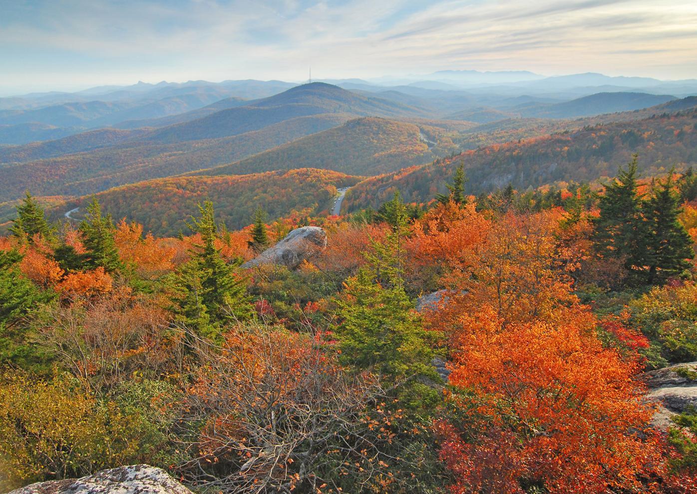 Black Rock View