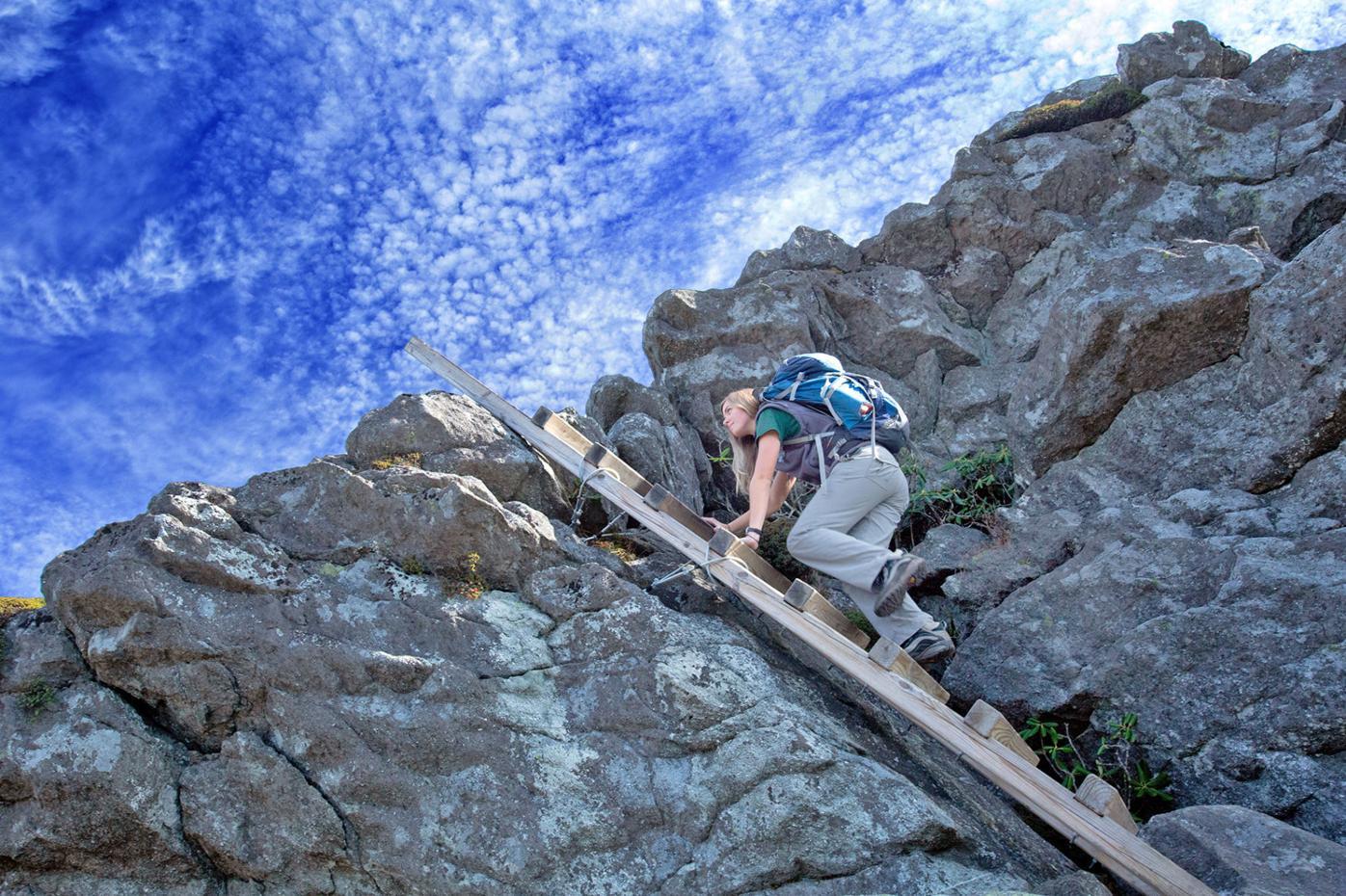 Hiker ladder