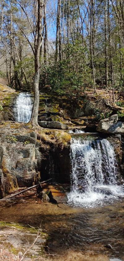 Waterfalls Park Newland
