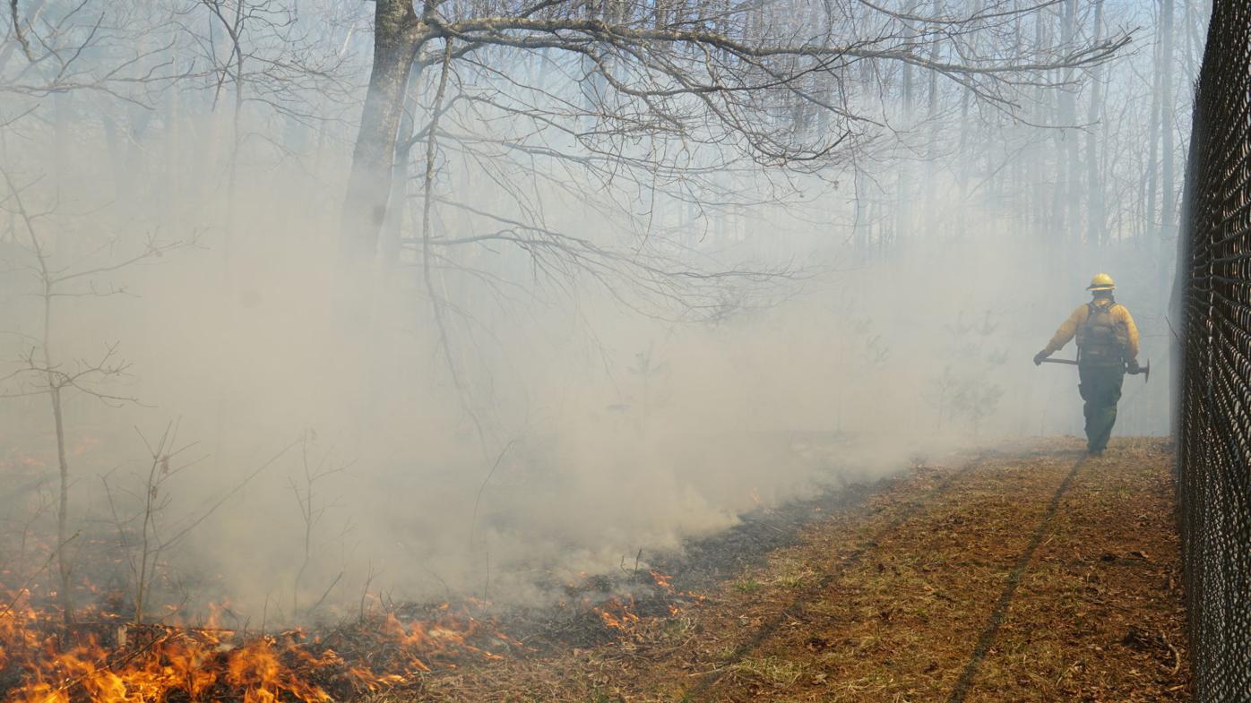 NRSP Ranger monitors prescribed burn