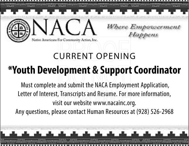 Youth Development & Support Coordinator
