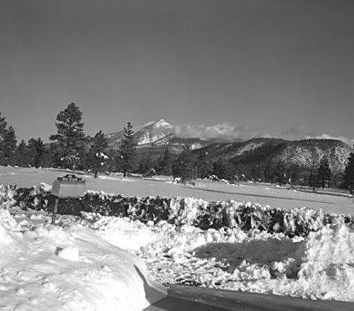 San Francisco Peaks 1959