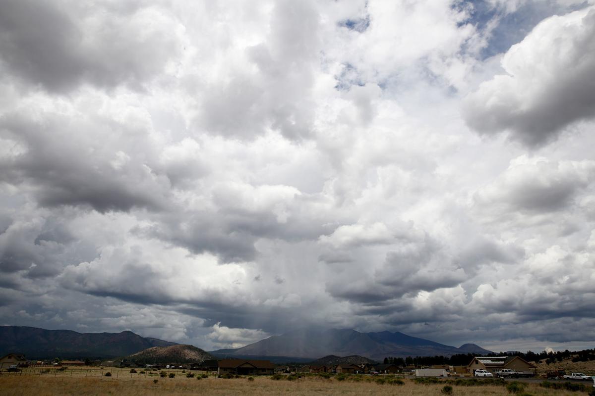Moist Monsoon