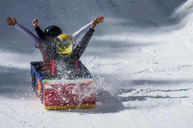 Cardboard Derby at Snowbowl